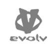 gfx-logo-evolv